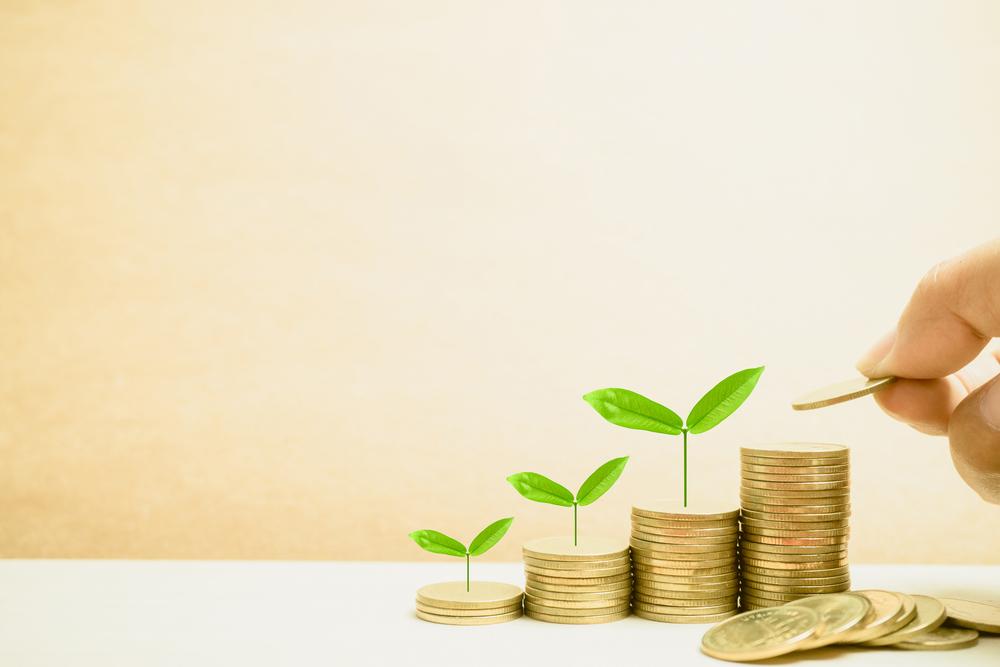 Mantenha uma gestão financeira enxuta